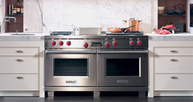 Best Professional Gas Ranges